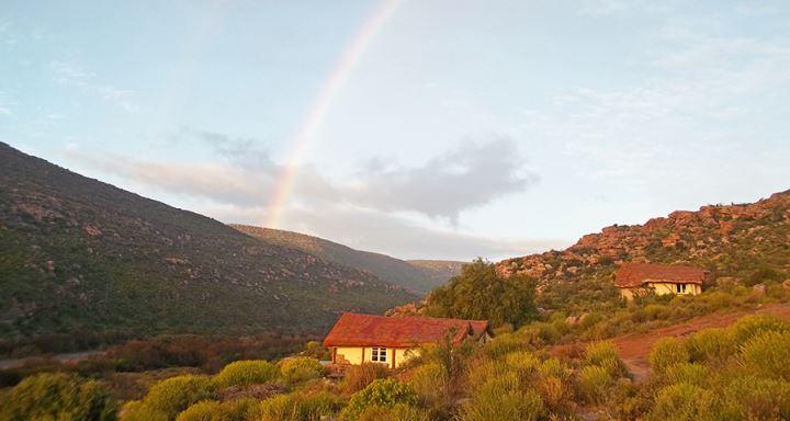 oudrif_rainbow